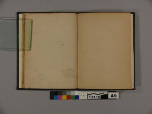 A blank page has been pasted to the verso of the previous page.