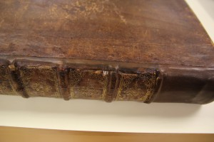 This is a closer view of the tacket and new leather. The spine pieces have not been replaced at this point.