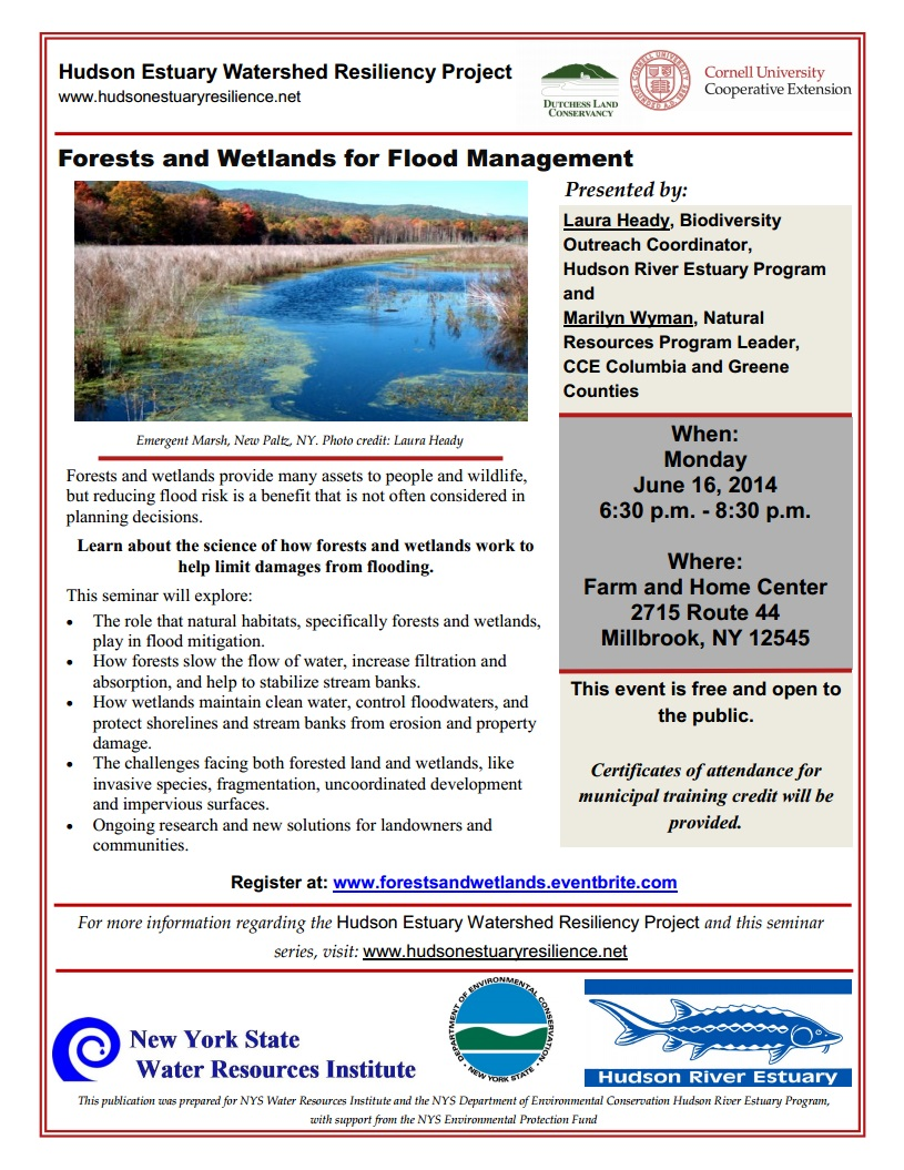 Forests and Wetlands Flyer - photo