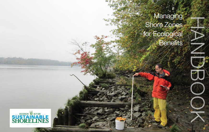 Managing shore zones for eco benefits screenshot