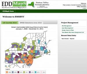 EDDMapS Project- BMSBNY