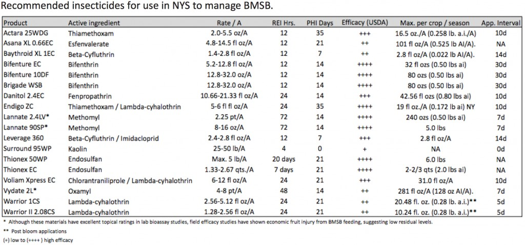 Insecticides for Use Against BMSB in NYS