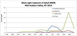 BMSB Hudson Valley Black Light Trap Network 8.04.14