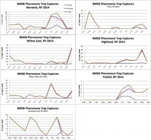 BMSB Hudson Valley Tedders Pheromone Trap Network 8.04.14