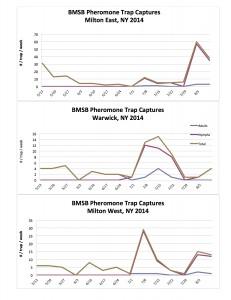 BMSB Pheromone Trap Data 8.15.14