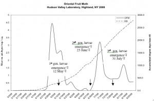 OFM graph '08 copy