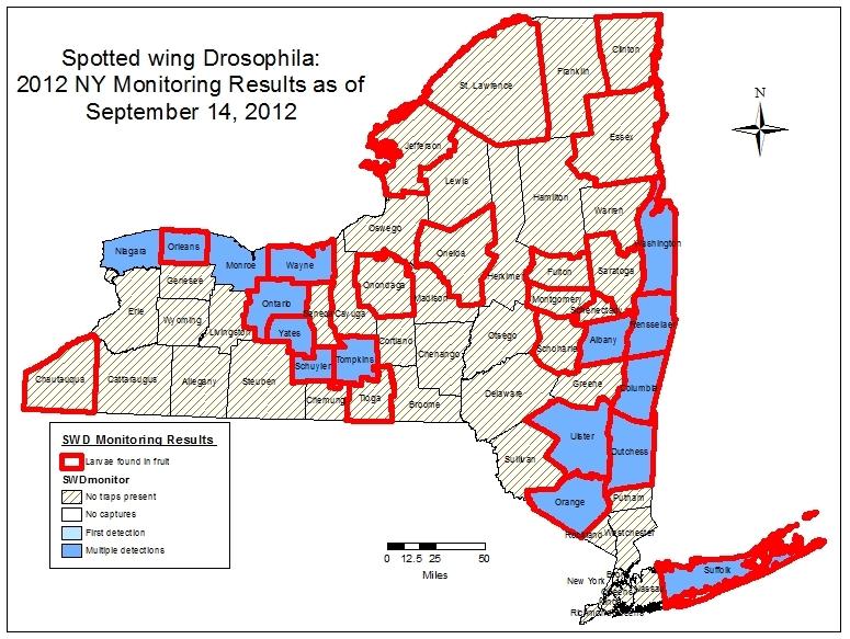 SWD-NY-Map