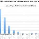 SWD Low Temp Fruit