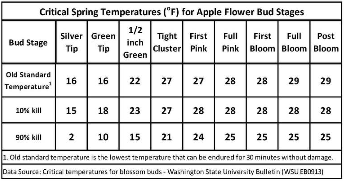 Critical Spring Temps for Apple
