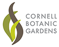 Cornel Botanic Gardens logo