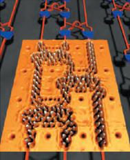 molecularcascade