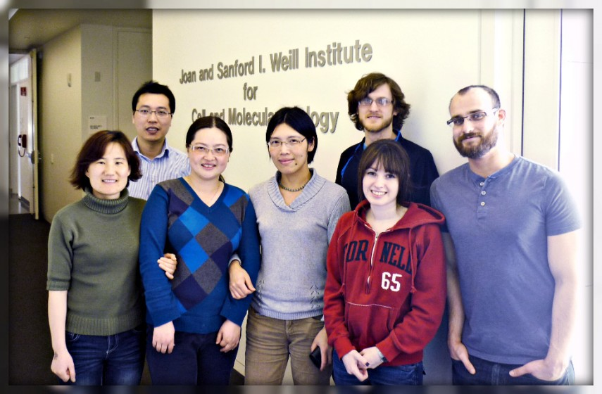 Hu-lab-2013-optmz