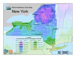 USDA Plant Hardiness Zone Map NYS
