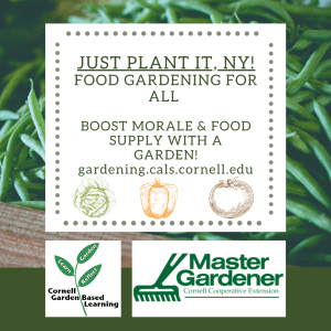 Just Plant It, NY! Food Gardening For All