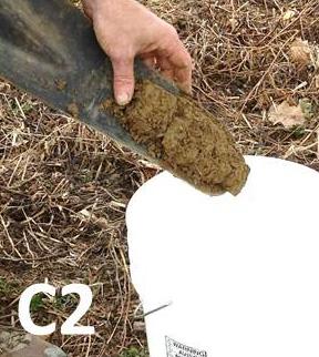 soil sampling how-to