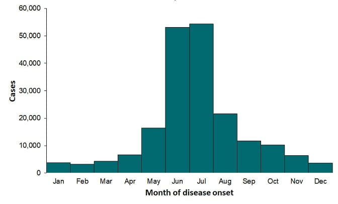 Bar graph showing confirmed cases of Lyme Disease by month. January - April cases are below 10,00. May climbs to almost 20,000 with a peak in June and July with over 50,000 cases. August fall back to about 20,000 and Sept. - Dec. continues to fall starting a little about 10,000 in Sept. and falling to below 5,000 in Dec.