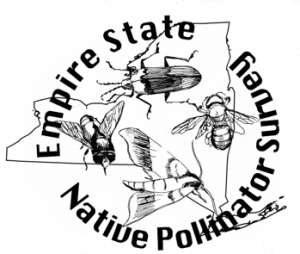 Logo - The outline of New York State under a picture of a moth, a beetle, a moth and a fly with the words Empire State Native Pollinator Survey
