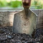 A garden trowel stuck in the the soil of a raised garden bed
