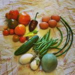 Assortment of heirloom vegetables on a blanket - tomatoes of various sizes, sizes colors and shapes, hote egg plants, a cucumber, a purple pepper, a pile of green beans, a few foot long beans