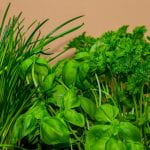 Bright Green Herb Plants - Chives, Basil, Parsley