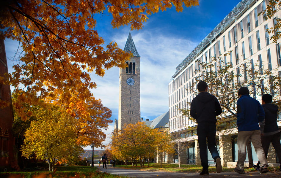 Students walking past Olin Library towards the Cornell Clock Tower in the Fall.