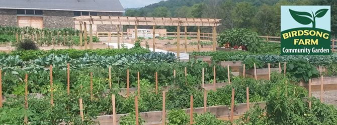 raised beds at birdsong farm community garden with logo