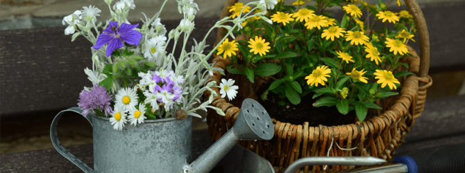 basket of flowers with gardening tools and a watering can