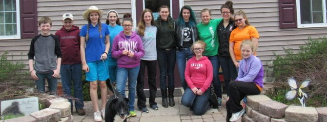 group of teens standing in front of an animal shelter with dogs they walked