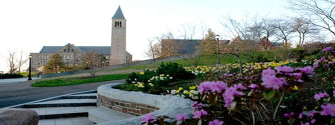 scenic path with flowers at Cornell University
