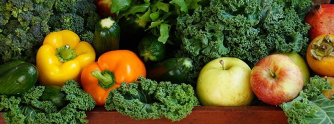 assortment of veggies at a stand in a bed of kale