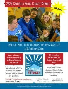 Catskills Youth Summit 2020 flyer