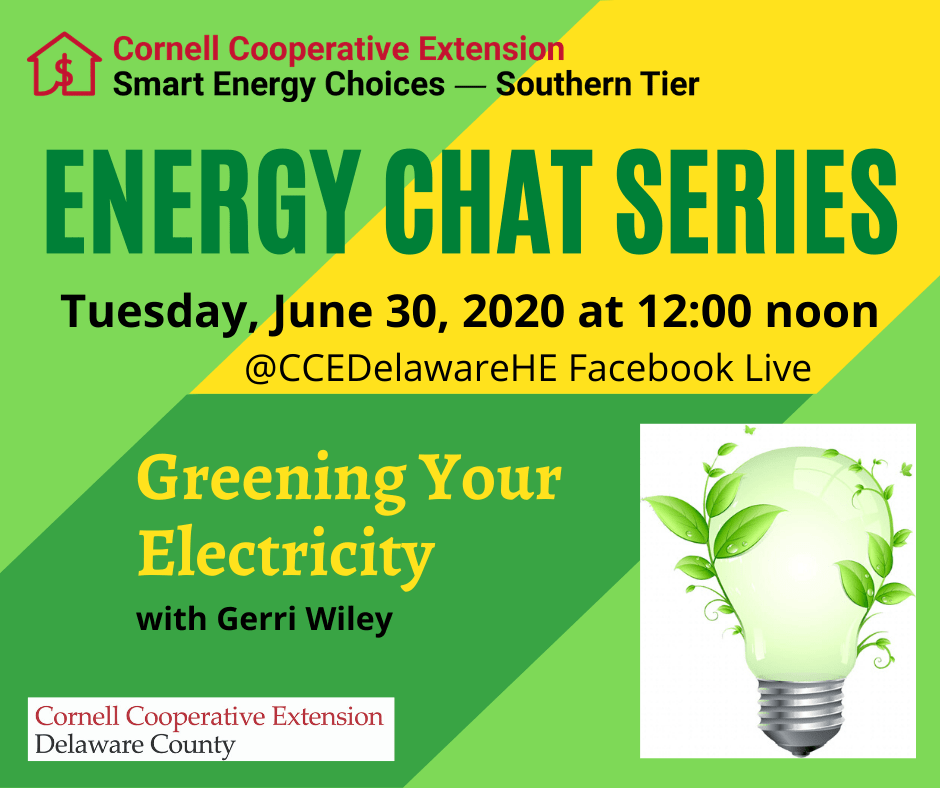 Energy Chat Series - Greening Your Electricity