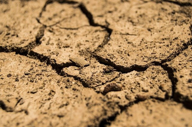 cracked earth with patches of grass