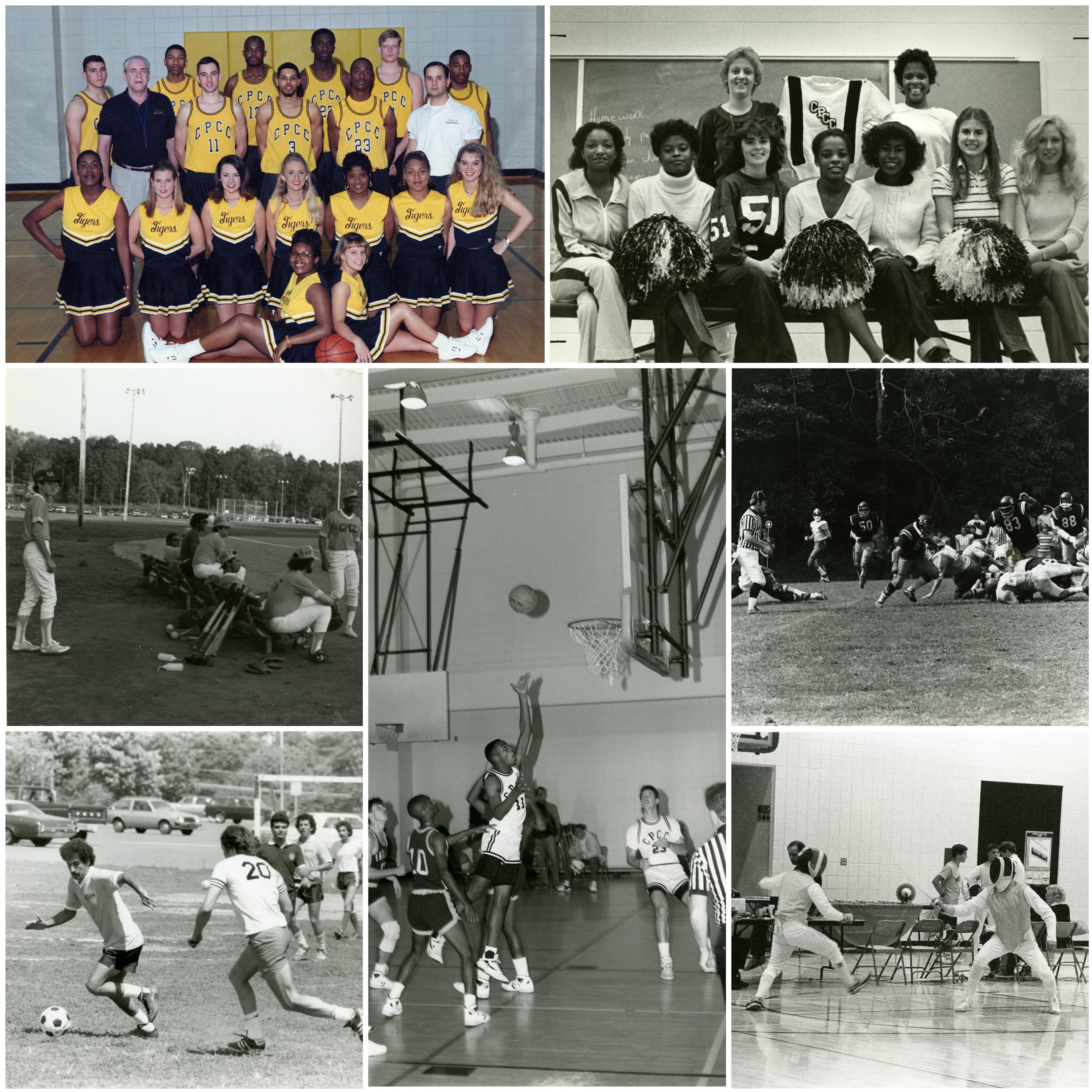 cpcc-athletics-collage-1