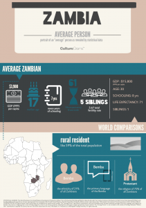 Infographic about the average person in Zambia