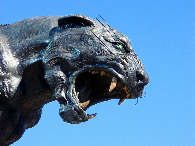 Carolina Panther Statue Head