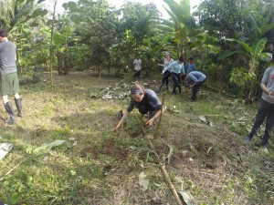 Tree Planting in Amazon