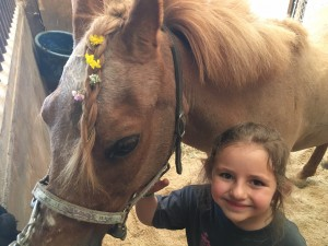 At the end of every camp week, we take the campers on a trail ride. One of the campers asked me to pick some flowers so we could braided them into Rosie's (the horse pictured) mane. Here is a photo after we braided in the flowers.