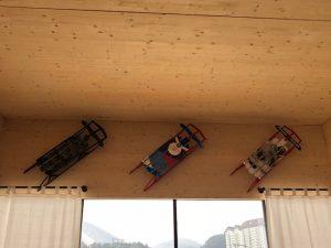 Team USA sponsor sleds