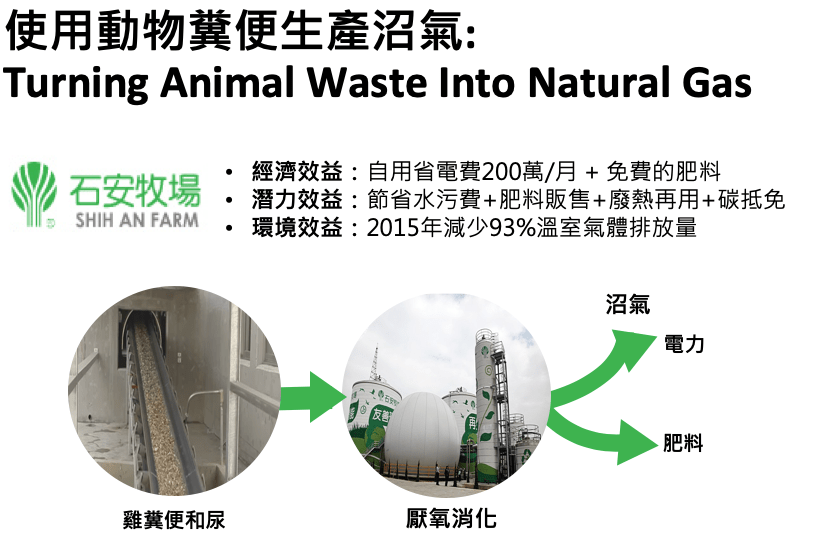 Turning Animal Waste Into Natural Gas