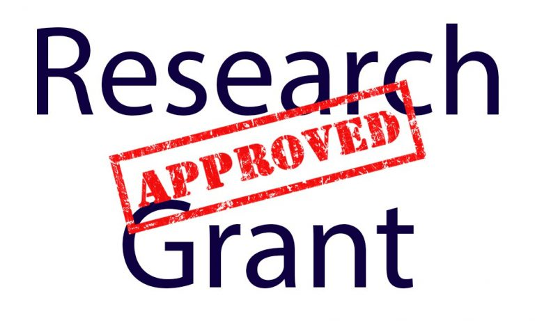 Undergrad Research and Service Grant