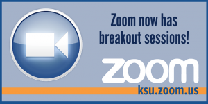 Zoom now has break out sessions