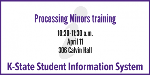 KSIS: Processing minors training