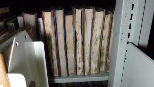 Mold blooms across the fore-edge of several books sitting on metal shelving.