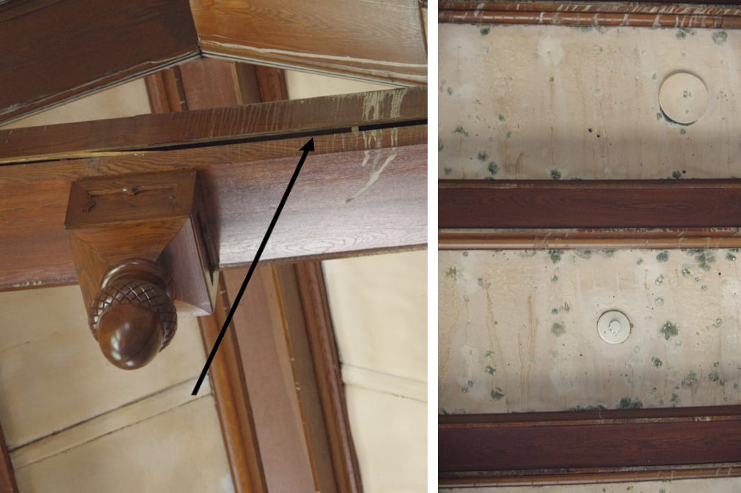 The Great Room ceiling: At left, a wooden beam that extends across the space has split lengthwise. At right, green mold spreading across the white plaster.