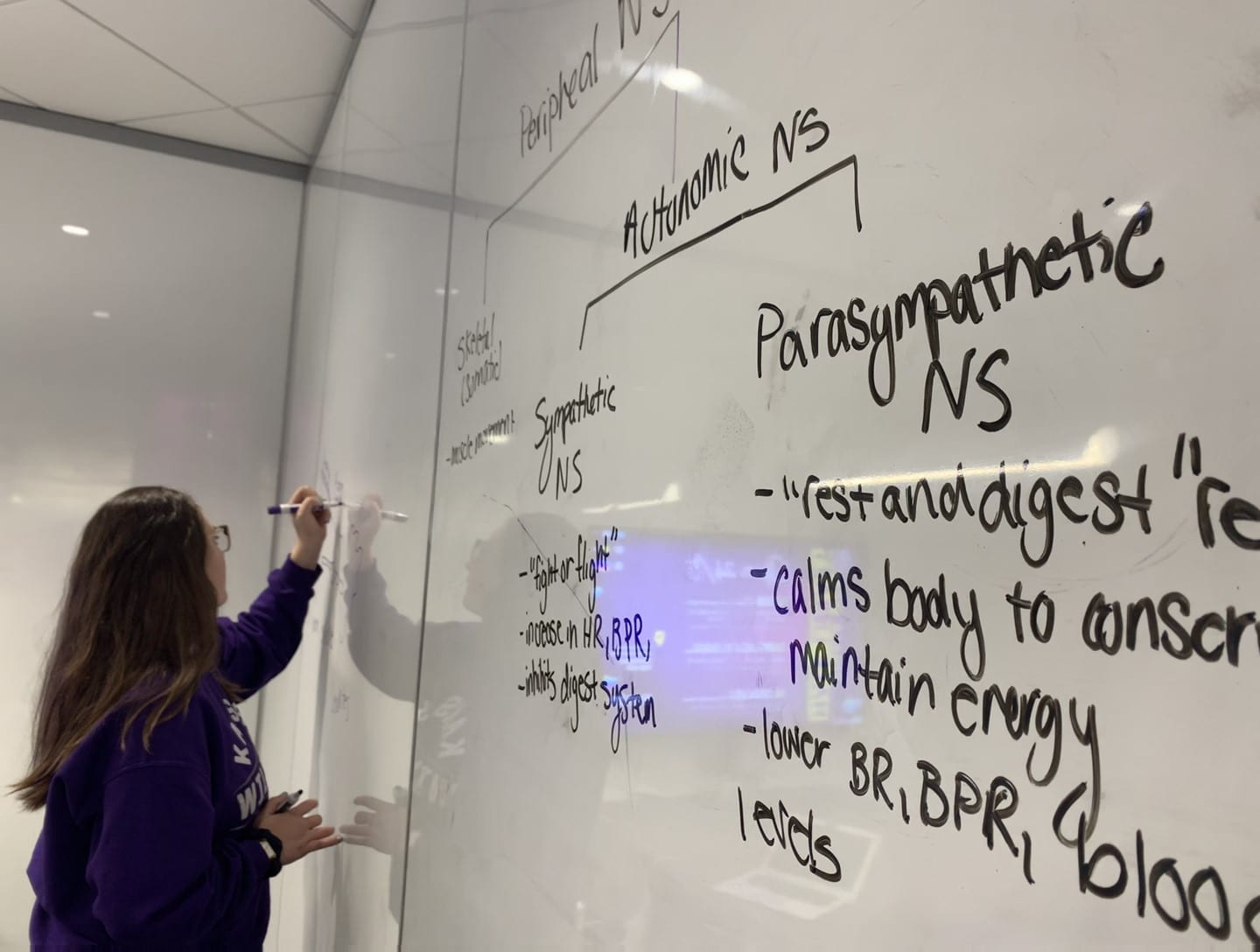 A student writes on a white board in Hale Library.