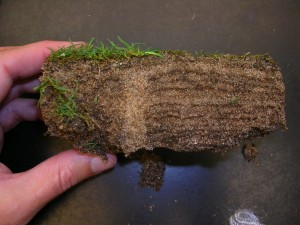layers and aeration hole