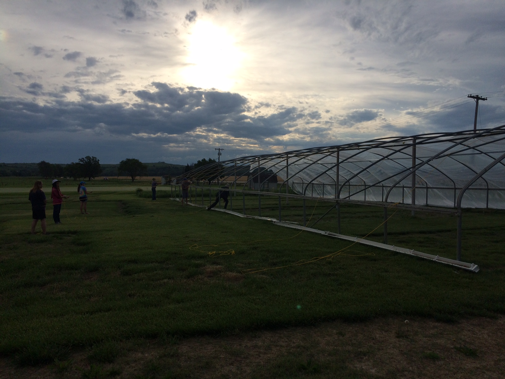 turf grass research Research corridor recently added new report titled turf grass seed market report - global trends, market share, industry size, growth, opportunities, and market forecast - 2018 – 2026 to its.