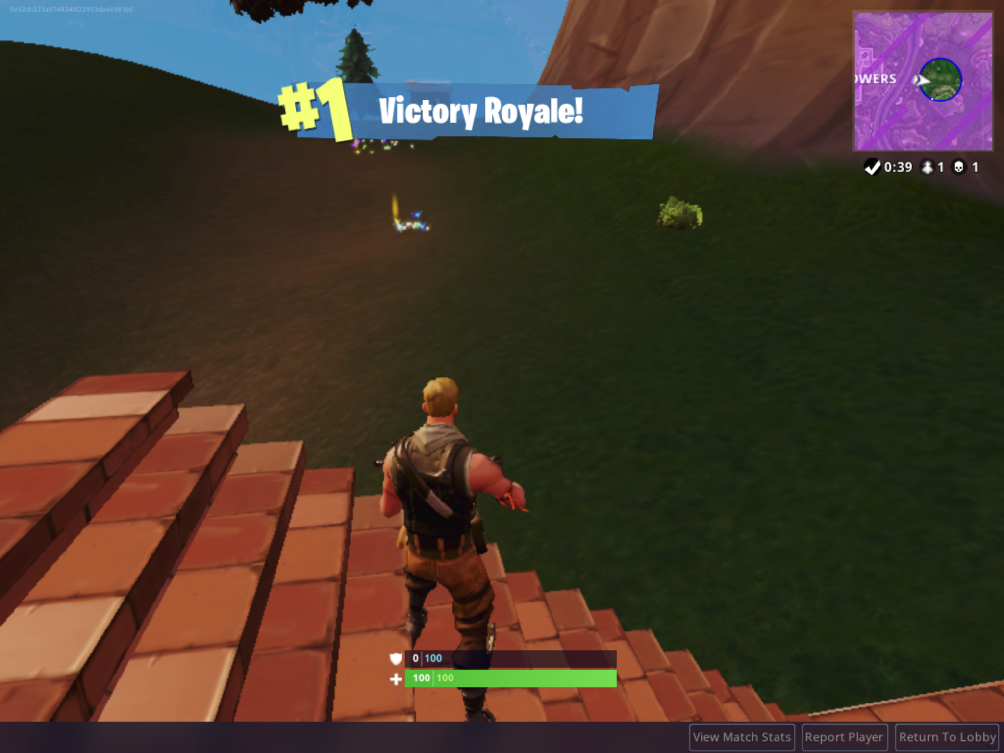 victory royale png