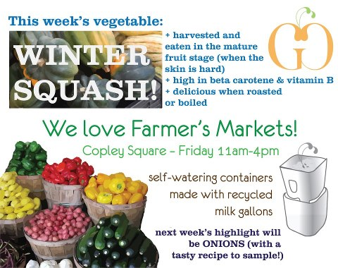 Winter Squash Highlight and Self-Watering Container Workshop